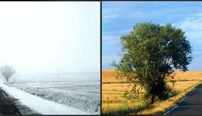 Invierno - verano